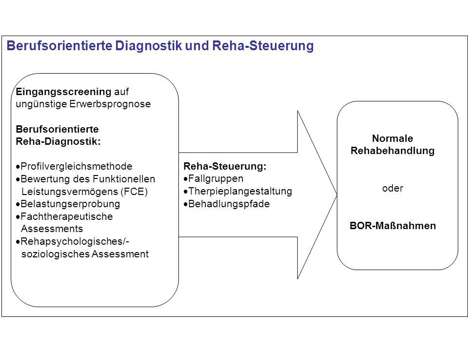 Berufsorientierte Diagnostik und Reha-Steuerung Eingangsscreening auf ungünstige Erwerbsprognose Berufsorientierte Reha-Diagnostik: Profilvergleichsme