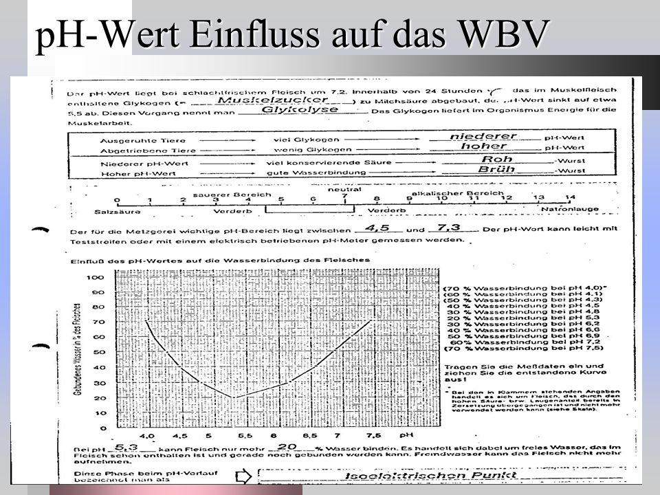pH-Wert Einfluss auf das WBV