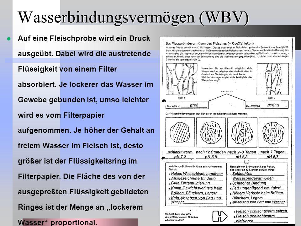 Wasserbindungsvermögen (WBV) Auf eine Fleischprobe wird ein Druck ausgeübt. Dabei wird die austretende Flüssigkeit von einem Filter absorbiert. Je loc