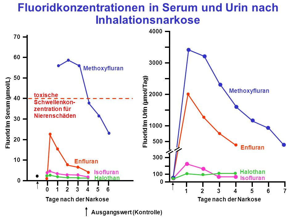 0123456 1234567 Tage nach der Narkose 4000 3000 2000 1000 500 300 100 0 70 60 50 40 30 20 10 0 Fluorid im Serum (µmol/L) Fluorid im Urin (µmol/Tag) toxische Schwellenkon- zentration für Nierenschäden Fluoridkonzentrationen in Serum und Urin nach Inhalationsnarkose Methoxyfluran Enfluran Isofluran Halothan Isofluran Halothan Enfluran Methoxyfluran Ausgangswert (Kontrolle)