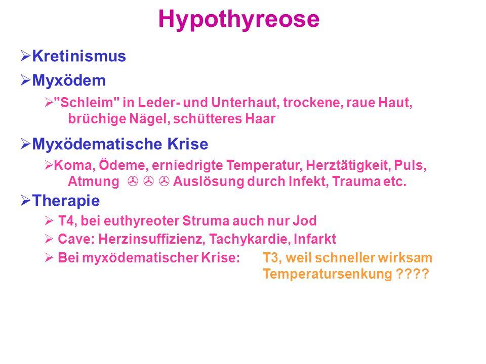 Hypothyreose Kretinismus Myxödem