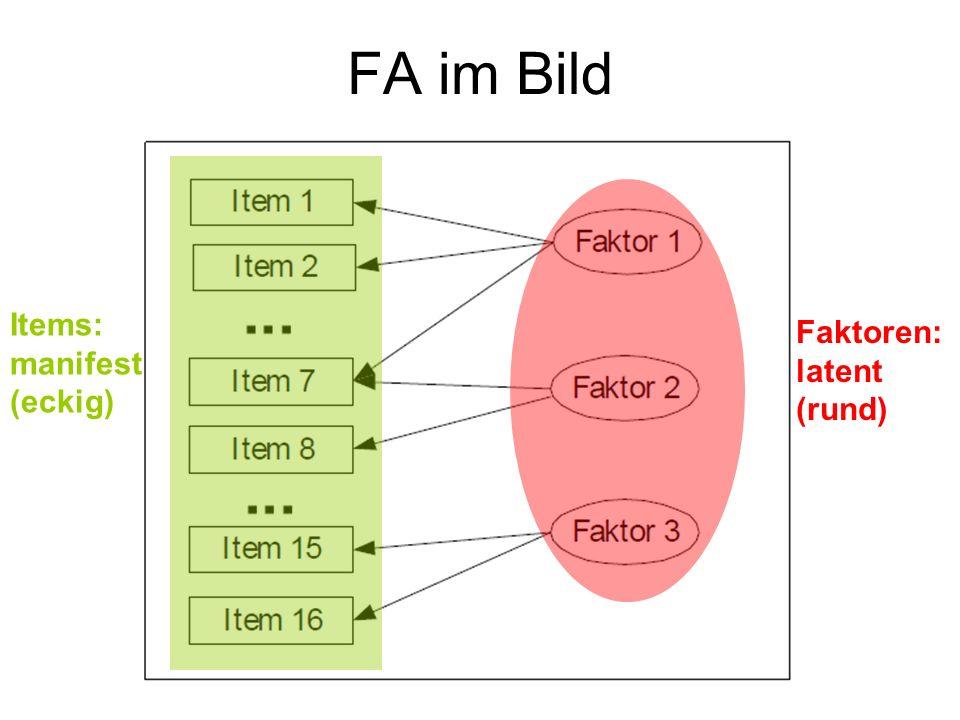FA im Bild Faktoren: latent (rund) Items: manifest (eckig)