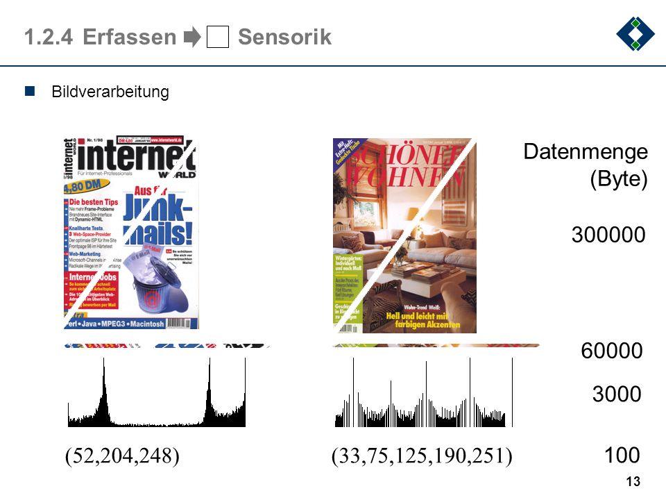 12 1.2.3Information Information ist die Bedeutung, die durch eine Nachricht übermittelt wird (nachrichtentechnische Definition) Kapitel 2 Information