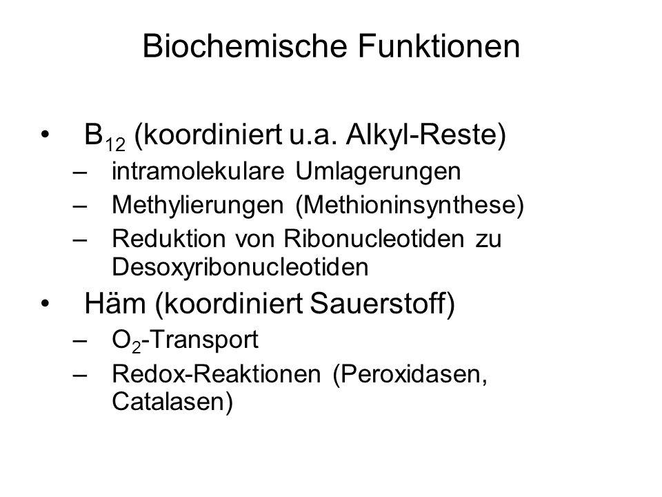 Biochemische Funktionen B 12 (koordiniert u.a. Alkyl-Reste) –intramolekulare Umlagerungen –Methylierungen (Methioninsynthese) –Reduktion von Ribonucle