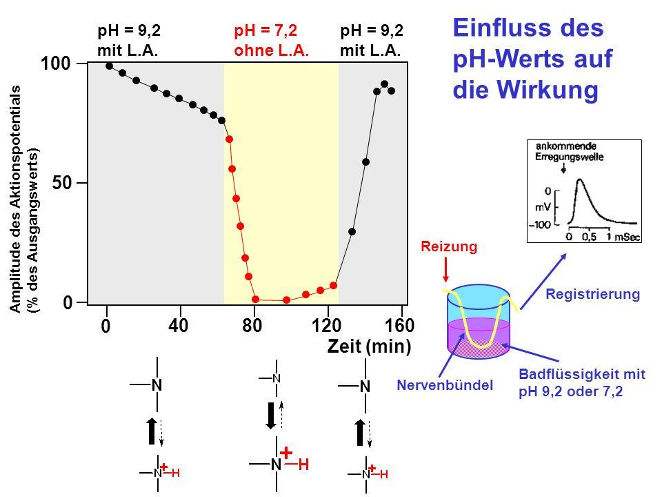 0 50 100 0 4080120160 Zeit (min) Amplitude des Aktionspotentials (% des Ausgangswerts) Einfluss des pH-Werts auf die Wirkung pH = 9,2 mit L.A. pH = 9,