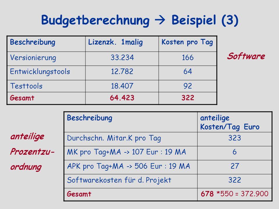 Budgetberechnung Beispiel (3) BeschreibungLizenzk. 1malig Kosten pro Tag Versionierung33.234166 Entwicklungstools12.78264 Testtools18.40792 Gesamt64.4