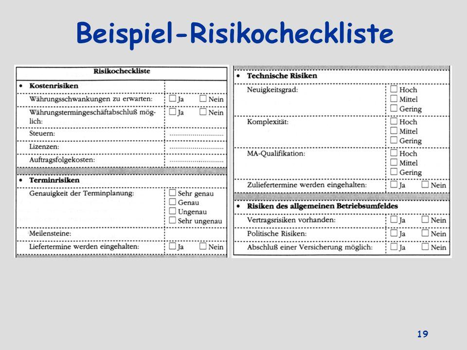 Beispiel-Risikocheckliste 19