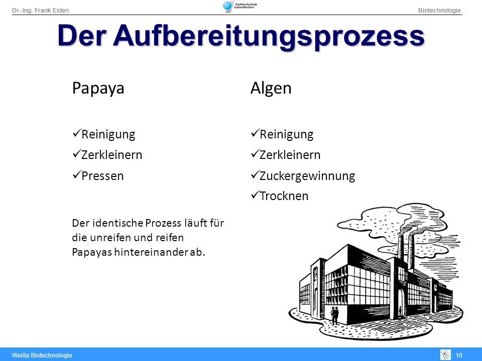 Dr.-Ing. Frank Eiden Biotechnologie Weiße Biotechnologie: 10 Der Aufbereitungsprozess PapayaAlgen Reinigung Zerkleinern Pressen Der identische Prozess
