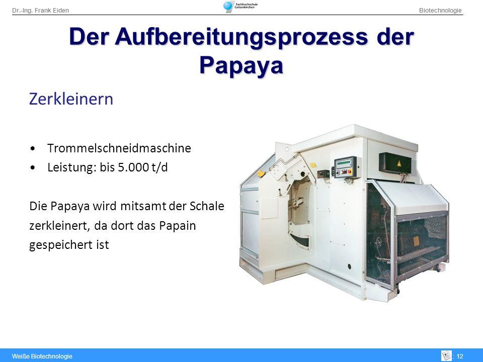 Dr.-Ing. Frank Eiden Biotechnologie Weiße Biotechnologie: 12 Der Aufbereitungsprozess der Papaya Zerkleinern Trommelschneidmaschine Leistung: bis 5.00