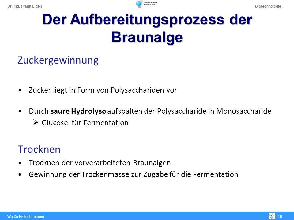 Dr.-Ing. Frank Eiden Biotechnologie Weiße Biotechnologie: 16 DerAufbereitungsprozess der Braunalge Der Aufbereitungsprozess der Braunalge Zuckergewinn