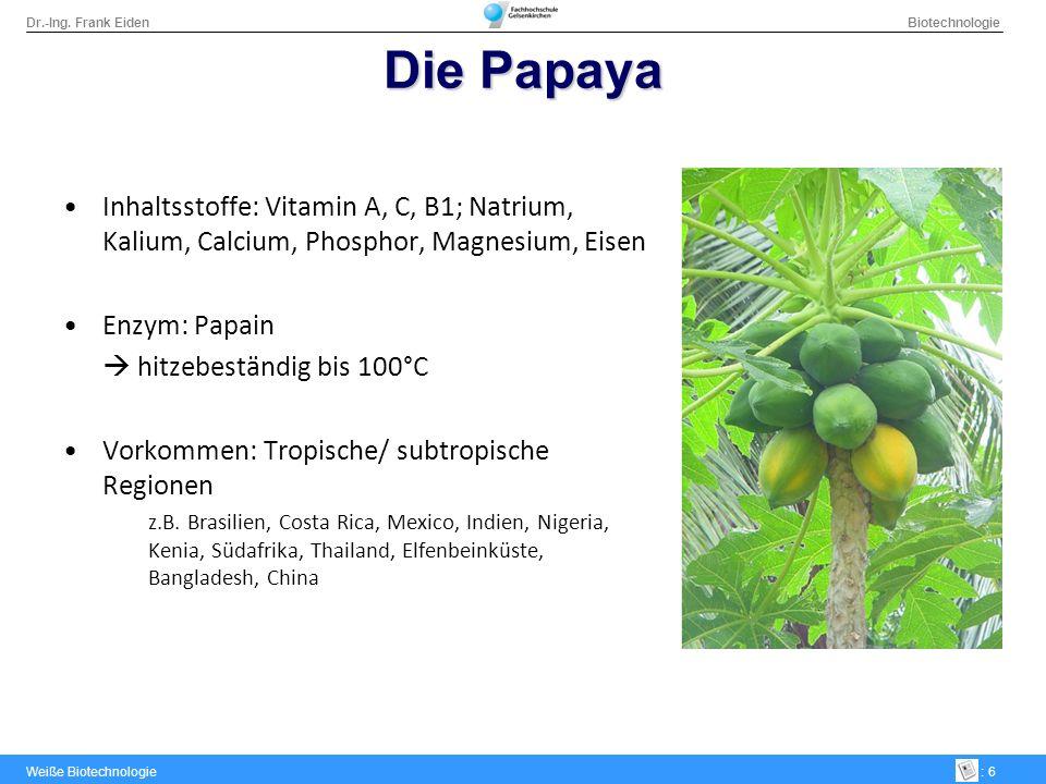 Dr.-Ing. Frank Eiden Biotechnologie Weiße Biotechnologie: 17 Fließschema Aufbereitungsprozess
