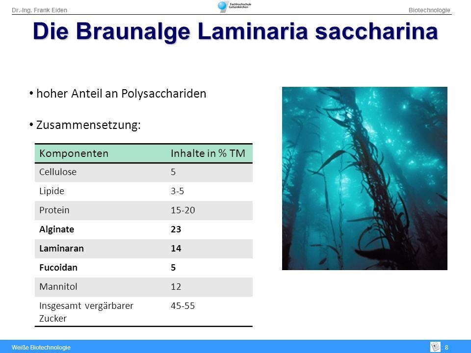 Dr.-Ing. Frank Eiden Biotechnologie Weiße Biotechnologie: 8 Die Braunalge Laminaria saccharina hoher Anteil an Polysacchariden Zusammensetzung: Kompon
