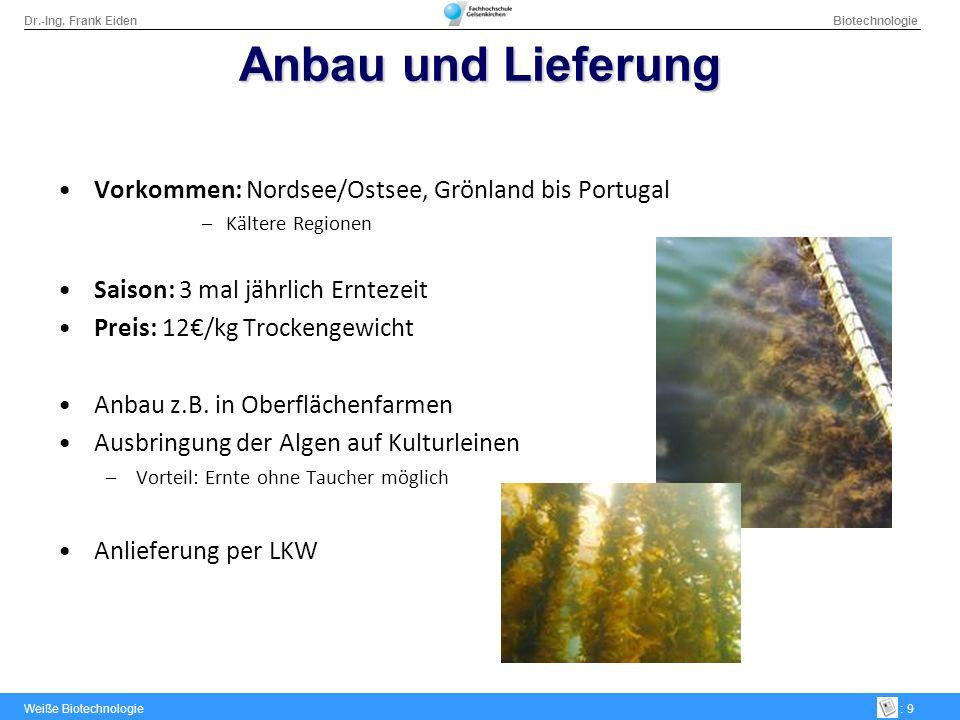 Dr.-Ing. Frank Eiden Biotechnologie Weiße Biotechnologie: 9 Anbau und Lieferung Vorkommen: Nordsee/Ostsee, Grönland bis Portugal –Kältere Regionen Sai