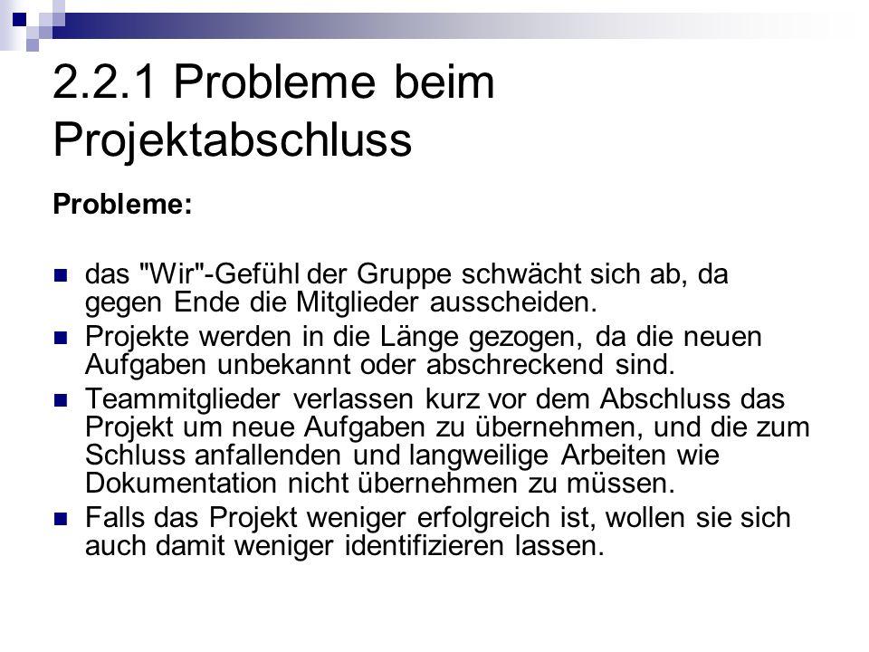 2.2.1 Probleme beim Projektabschluss Probleme: das