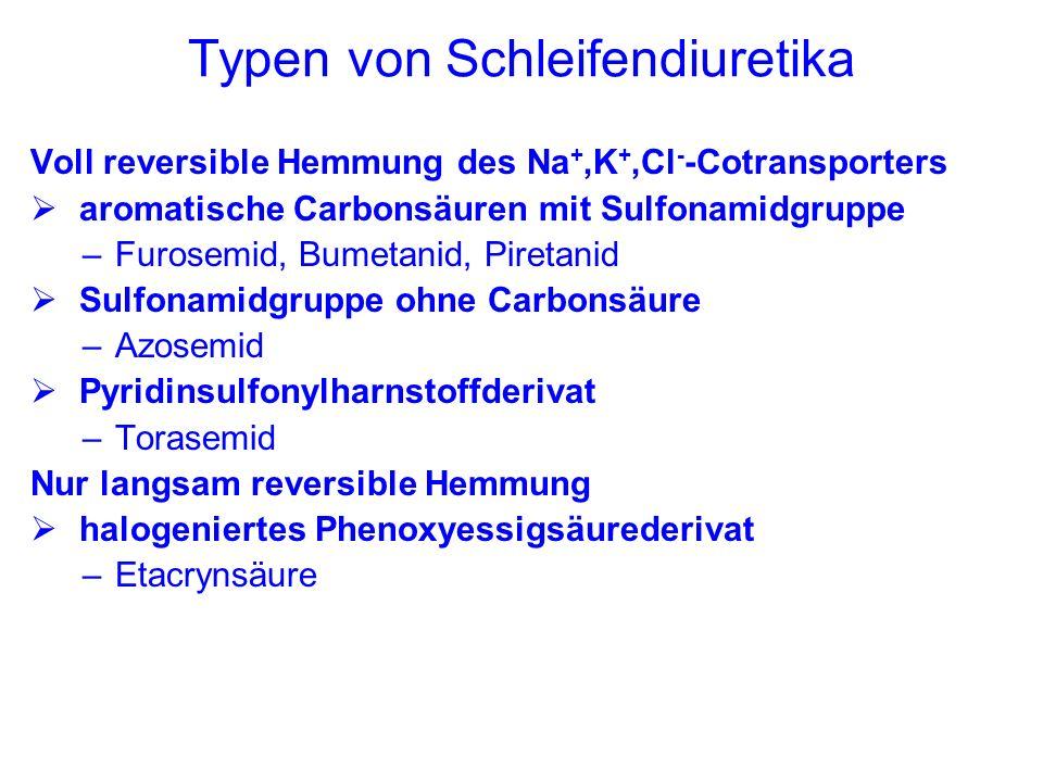 Hemmung des Na +,Cl - -Cotransporters im frühdistalen Tubulus: Thiazide Na + wird zusammen mit Cl - in die Tubuluszelle transportiert Treibende Kraft ist der aktive Transport von 3 Na + gegen 2 K + in der Basolateralmembran Thiazide hemmen den Cotransporter entwickelt aus CA-Hemmern...