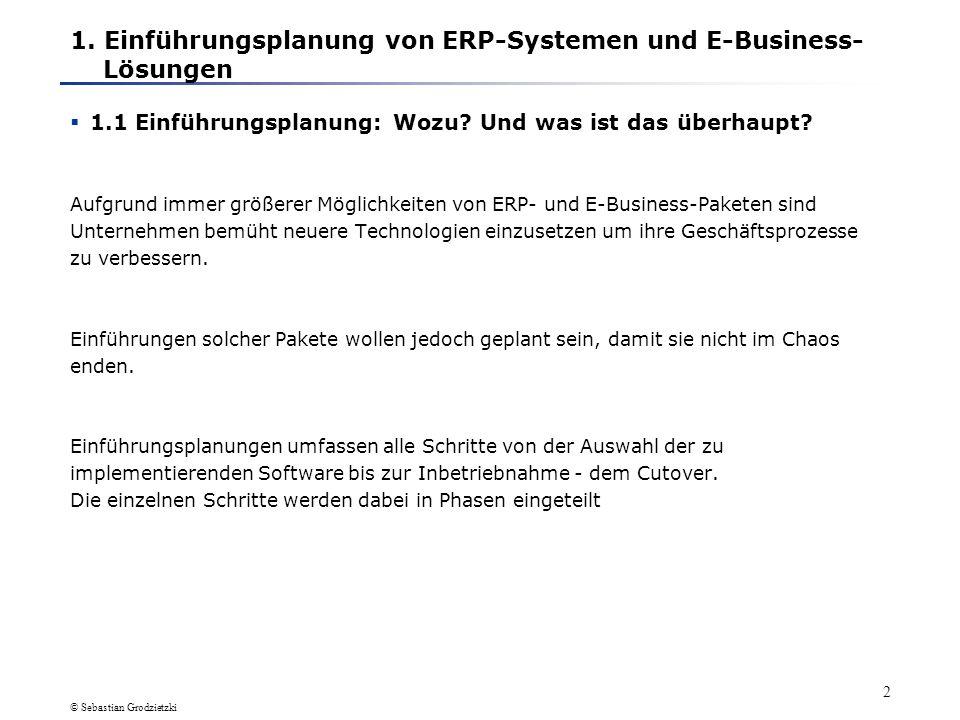 © Sebastian Grodzietzki 1 Einführungsplanung/ IT-Integration 1. Einführungsplanung von ERP-Systemen und E-Business-Lösungen 1.1 Einführungsplanung: Wo