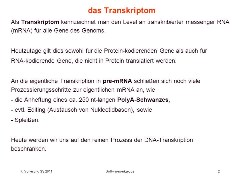 7.Vorlesung SS 2011Softwarewerkzeuge33 Transkription durch RNA Polymerase II Tamkun J.