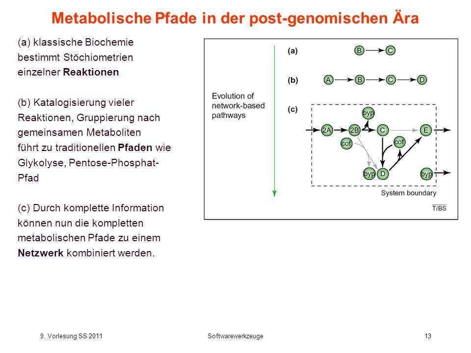 9. Vorlesung SS 2011Softwarewerkzeuge13 Metabolische Pfade in der post-genomischen Ära (a) klassische Biochemie bestimmt Stöchiometrien einzelner Reak