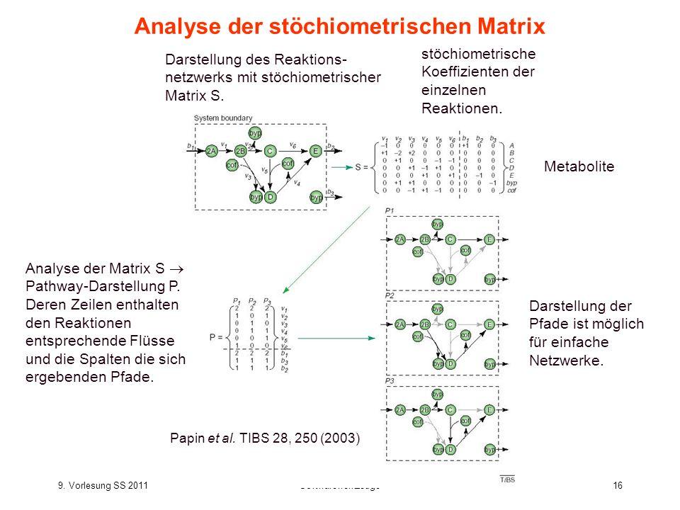 9. Vorlesung SS 2011Softwarewerkzeuge16 Analyse der stöchiometrischen Matrix Analyse der Matrix S Pathway-Darstellung P. Deren Zeilen enthalten den Re