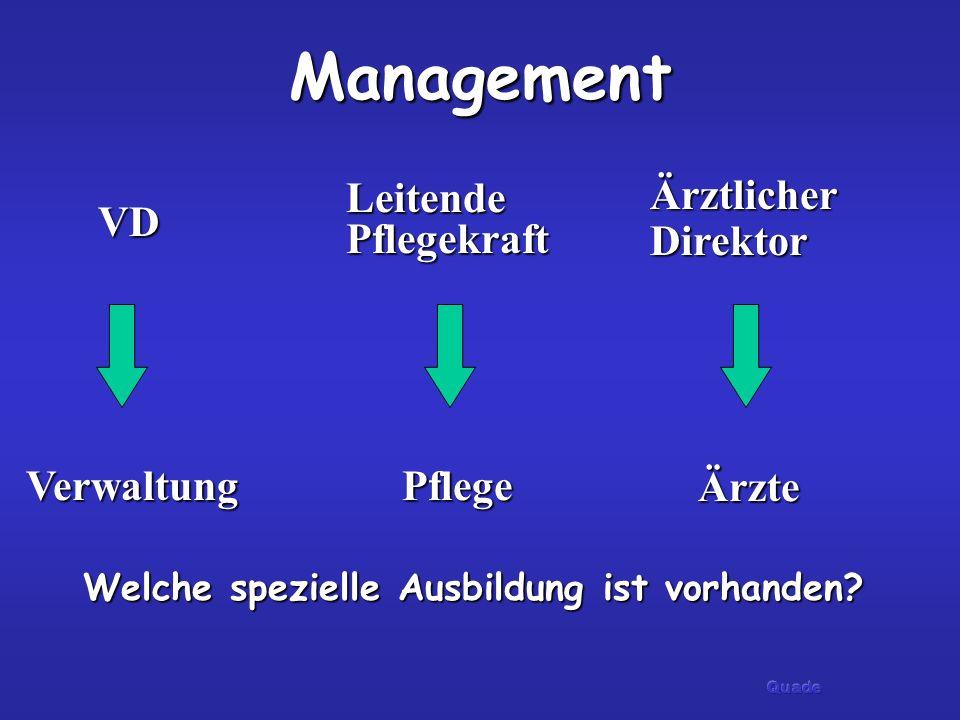 ManagementVerwaltung Ärzte Pflege VD Leitende Pflegekraft Ärztlicher Direktor Welche spezielle Ausbildung ist vorhanden?