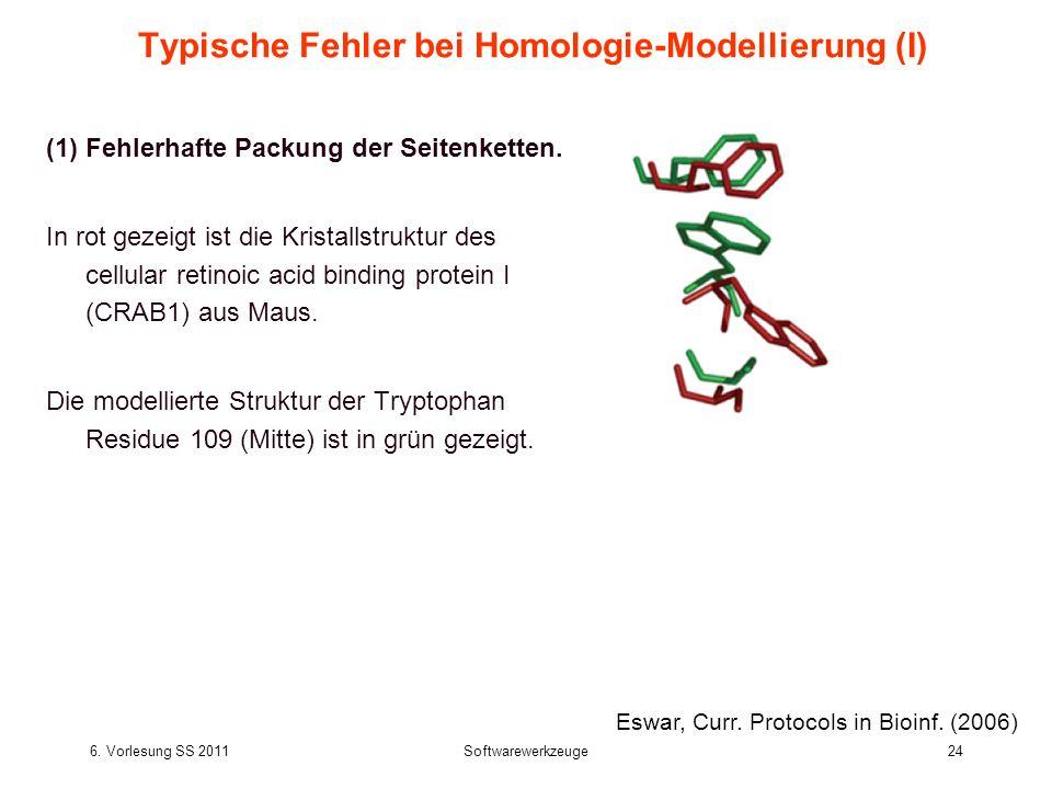 6. Vorlesung SS 2011Softwarewerkzeuge24 Typische Fehler bei Homologie-Modellierung (I) (1)Fehlerhafte Packung der Seitenketten. In rot gezeigt ist die
