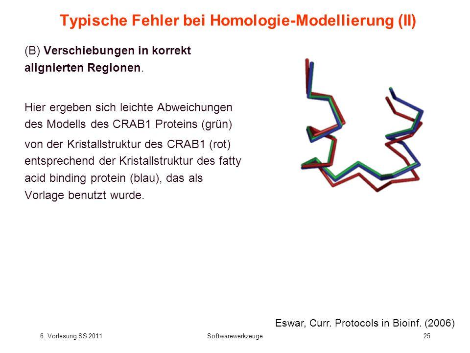 6. Vorlesung SS 2011Softwarewerkzeuge25 Typische Fehler bei Homologie-Modellierung (II) (B) Verschiebungen in korrekt alignierten Regionen. Hier ergeb