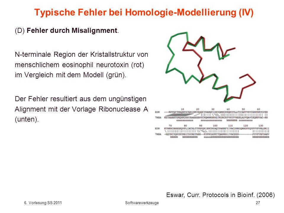 6. Vorlesung SS 2011Softwarewerkzeuge27 Typische Fehler bei Homologie-Modellierung (IV) (D) Fehler durch Misalignment. N-terminale Region der Kristall