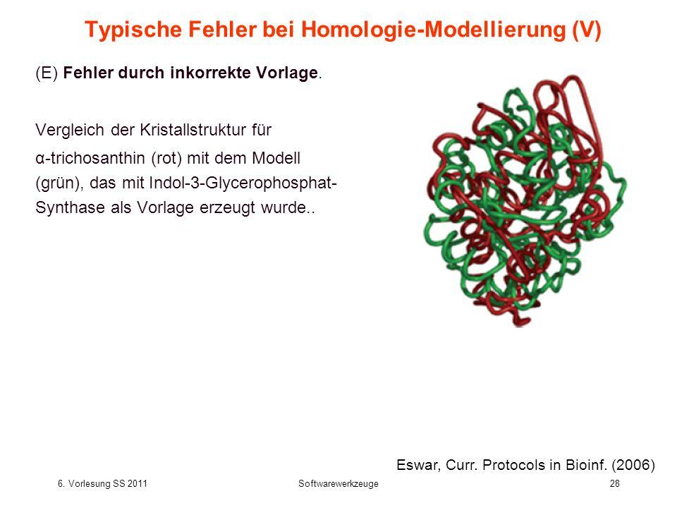 6. Vorlesung SS 2011Softwarewerkzeuge28 Typische Fehler bei Homologie-Modellierung (V) (E) Fehler durch inkorrekte Vorlage. Vergleich der Kristallstru