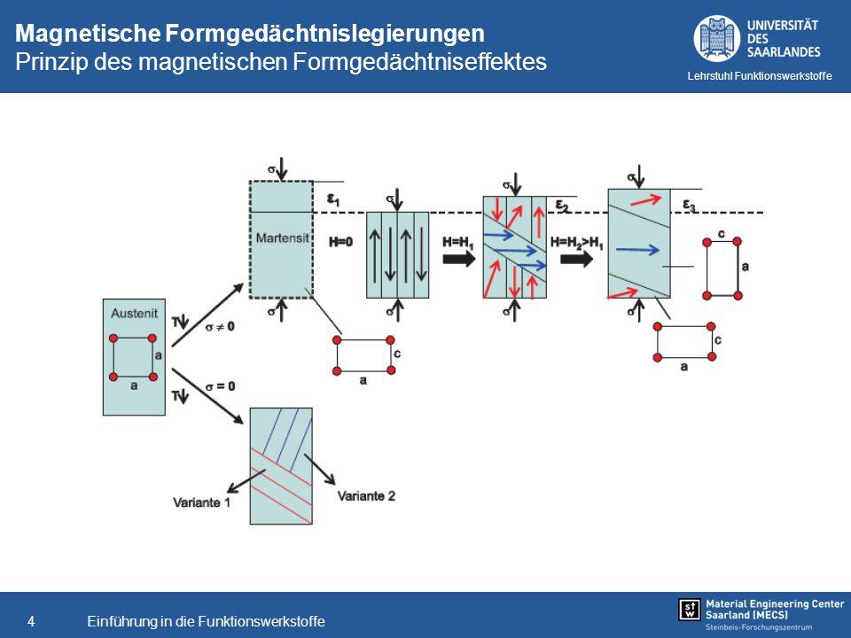 Einführung in die Funktionswerkstoffe4 Lehrstuhl Funktionswerkstoffe Magnetische Formgedächtnislegierungen Prinzip des magnetischen Formgedächtniseffe