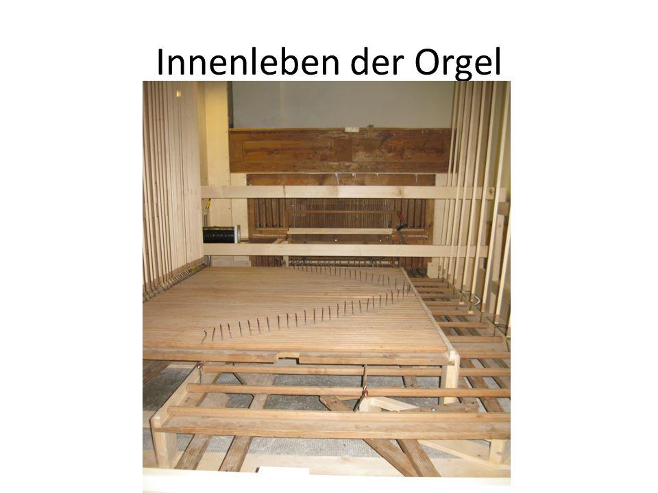 Innenleben der Orgel