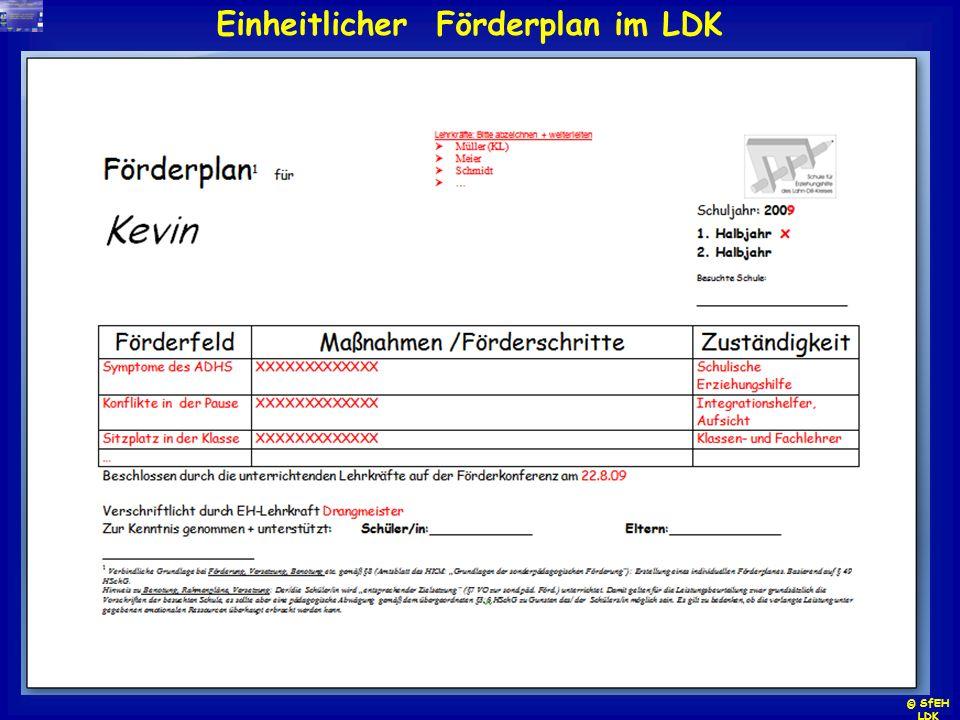 Einheitlicher Förderplan im LDK