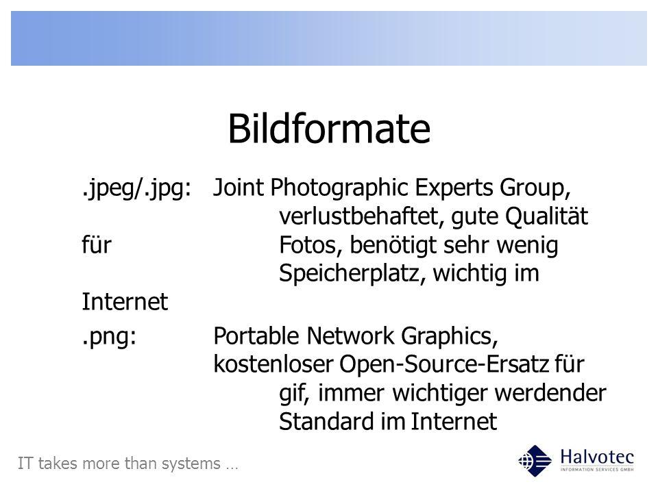 Textformate IT takes more than systems ….txt:Textdatei, ASCII-Zeichensatz.doc:Microsoft Word-Dokument – gibt keine eindeutige Spezifizierung, ändert sich häufig.rtf:Rich Text Format, wichtig für Programmierer, weil RTF-Dateien einfach zu erzeeugen sind