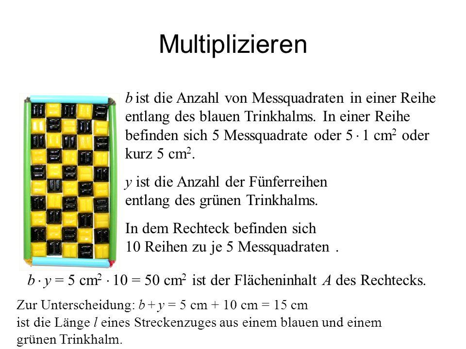 IQSH Multiplizieren b ist die Anzahl von Messquadraten in einer Reihe entlang des blauen Trinkhalms. In einer Reihe befinden sich 5 Messquadrate oder