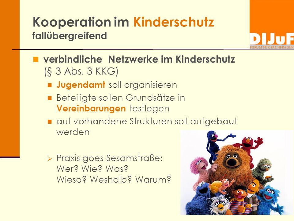 Kooperation im Kinderschutz fallübergreifend verbindliche Netzwerke im Kinderschutz (§ 3 Abs. 3 KKG) Jugendamt soll organisieren Beteiligte sollen Gru