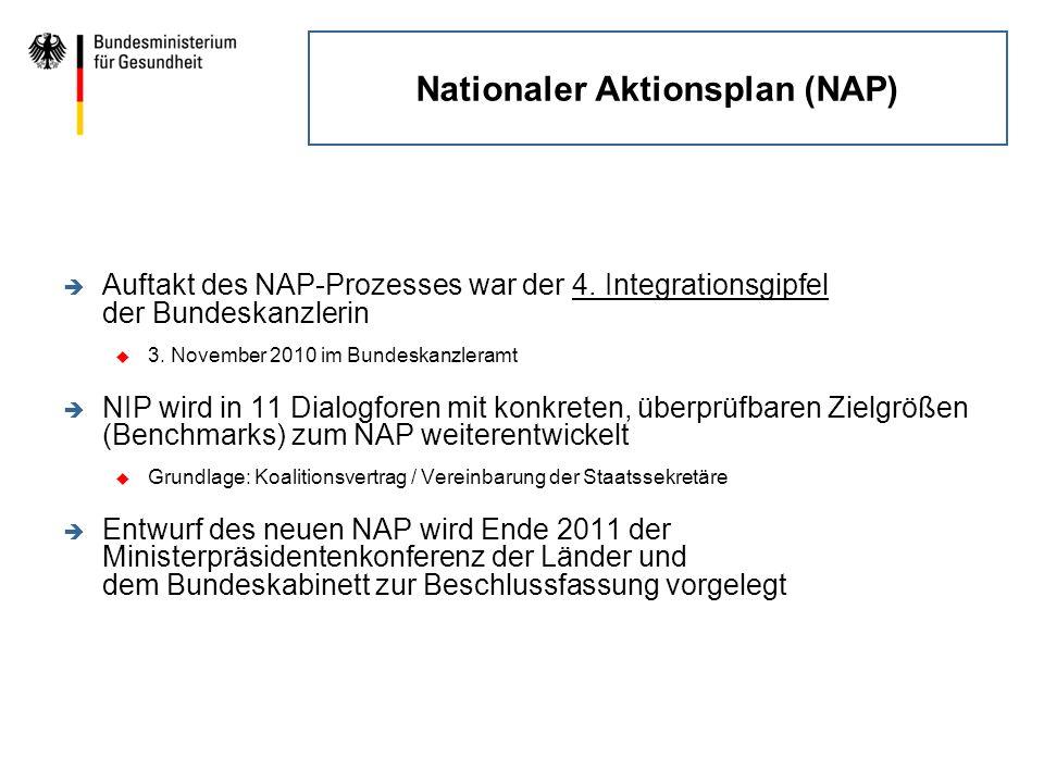 Nationaler Aktionsplan (NAP) è Ziel: Erhöhung der Verbindlichkeit durch konkrete und überprüfbare Zielgrößen (Benchmarks) è Voraussetzung: Prokura/Entscheidungsbefugnis der Teilnehmerinnen und Teilnehmer am Dialogforum für ihre Organisation è Folgeprozess: Überprüfung durch 2.