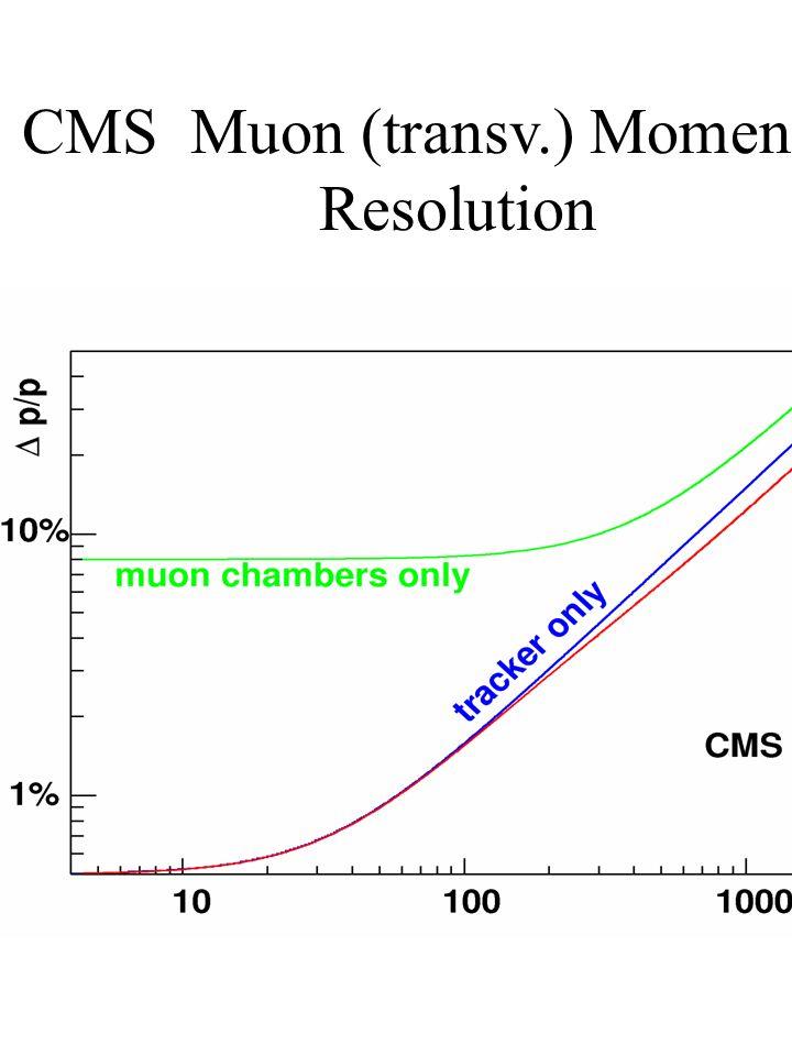 CMS Muon (transv.) Momentum Resolution