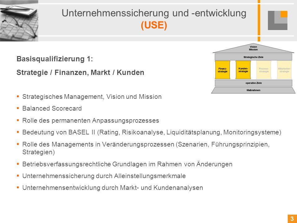 3 3 Unternehmenssicherung und -entwicklung (USE) Basisqualifizierung 1: Strategie / Finanzen, Markt / Kunden Strategisches Management, Vision und Miss