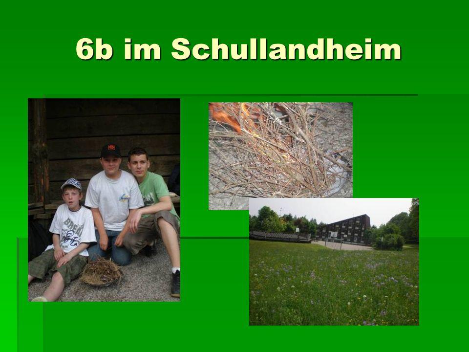 6b im Schullandheim