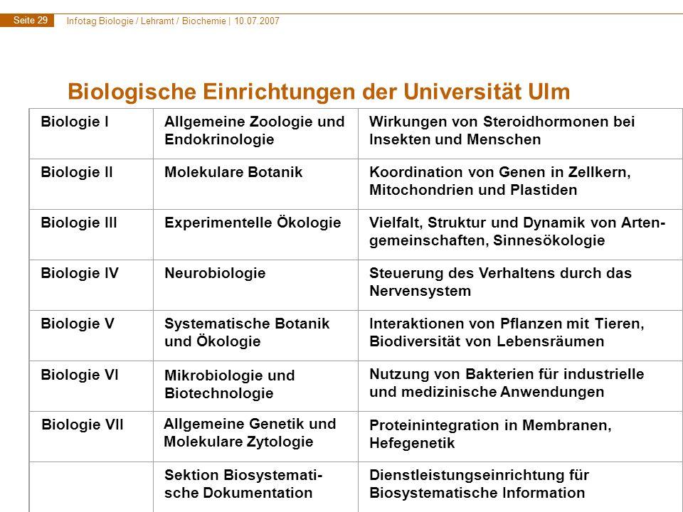 Infotag Biologie / Lehramt / Biochemie | 10.07.2007 Seite 30 Studienberatung: Spezielle Beratung für Planung des Hauptstudiums bei Dr.