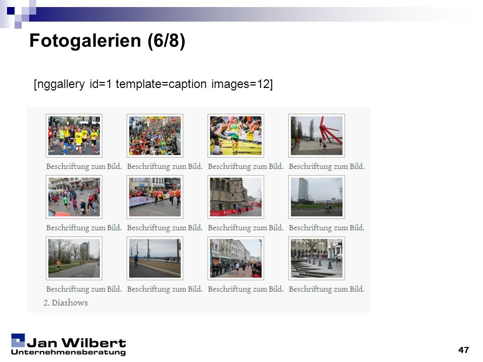Fotogalerien (6/8) 47 [nggallery id=1 template=caption images=12]