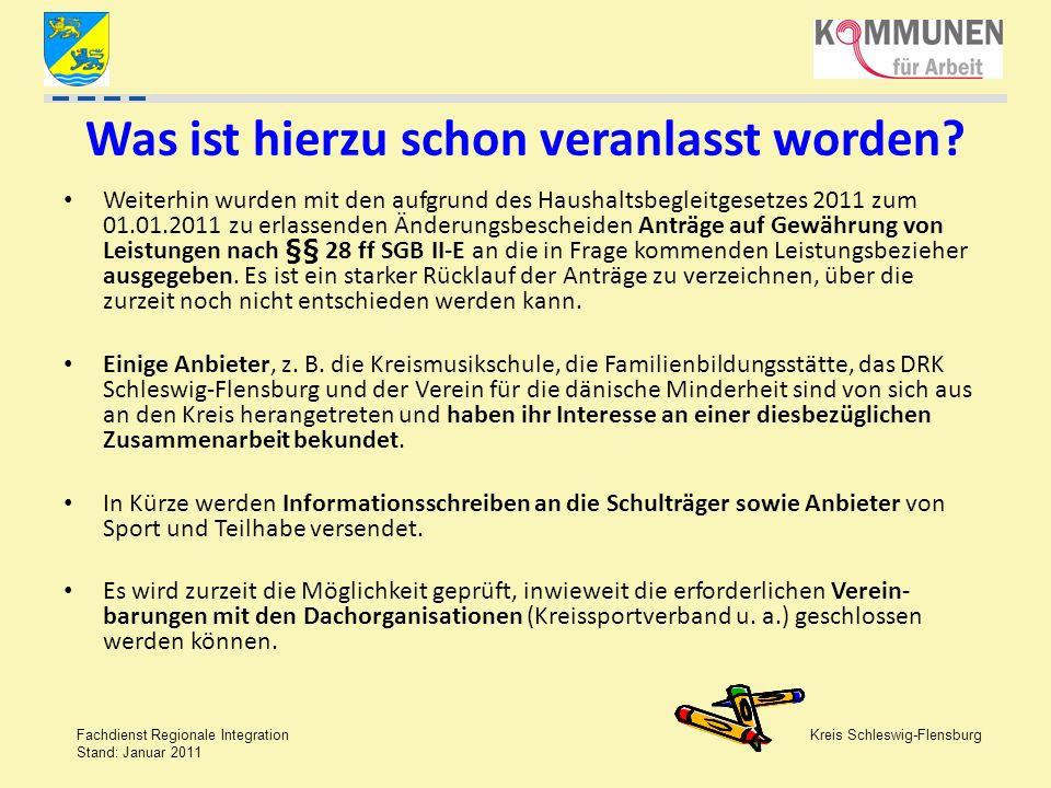 Kreis Schleswig-Flensburg Fachdienst Regionale Integration Stand: Januar 2011 Was ist hierzu schon veranlasst worden? Weiterhin wurden mit den aufgrun