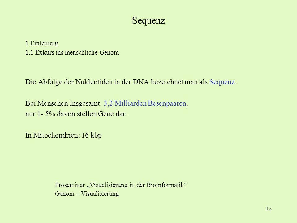 12 1 Einleitung 1.1 Exkurs ins menschliche Genom Die Abfolge der Nukleotiden in der DNA bezeichnet man als Sequenz. Bei Menschen insgesamt: 3,2 Millia
