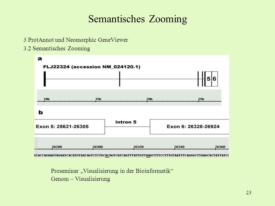23 3 ProtAnnot und Neomorphic GeneViewer 3.2 Semantisches Zooming Proseminar Visualisierung in der Bioinformatik Genom – Visualisierung Semantisches Z