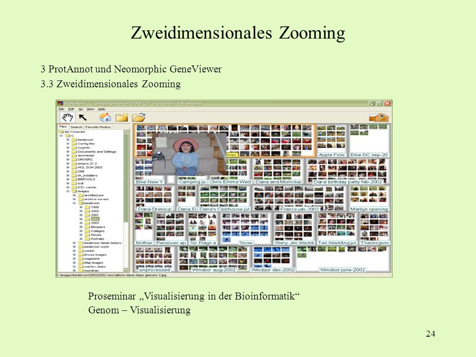 24 3 ProtAnnot und Neomorphic GeneViewer 3.3 Zweidimensionales Zooming Proseminar Visualisierung in der Bioinformatik Genom – Visualisierung Zweidimen