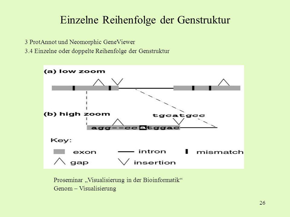 26 3 ProtAnnot und Neomorphic GeneViewer 3.4 Einzelne oder doppelte Reihenfolge der Genstruktur Proseminar Visualisierung in der Bioinformatik Genom –
