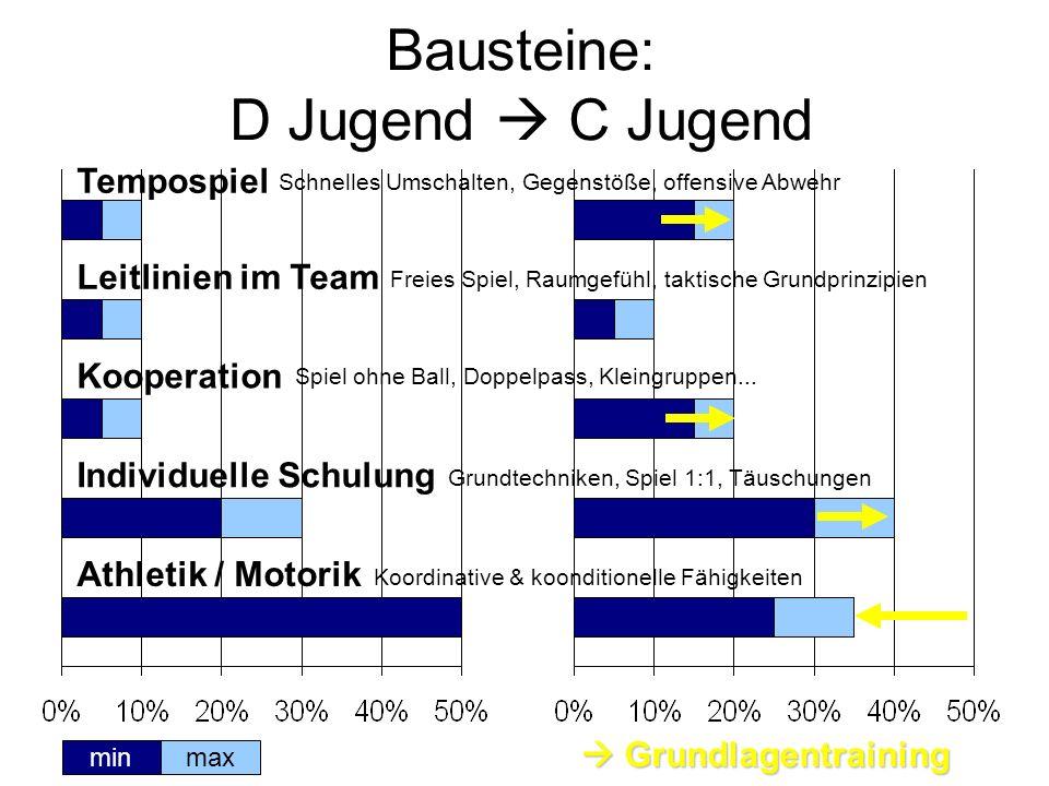Bausteine: D Jugend C Jugend Tempospiel maxmin Koordinative & koonditionelle Fähigkeiten Grundtechniken, Spiel 1:1, Täuschungen Kooperation Leitlinien