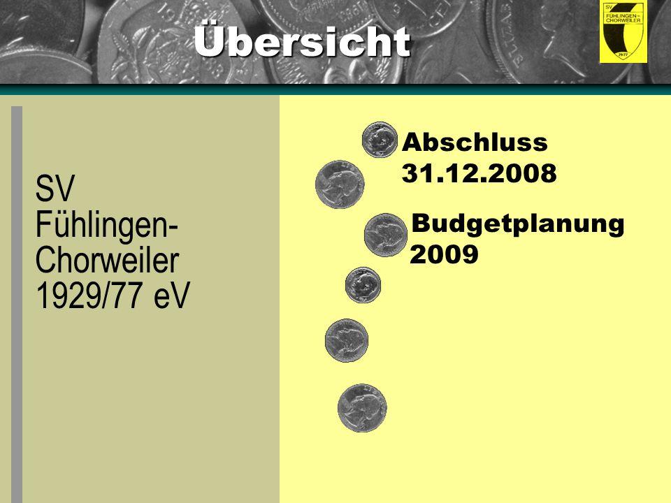 Übersicht Abschluss 31.12.2008 Budgetplanung 2009