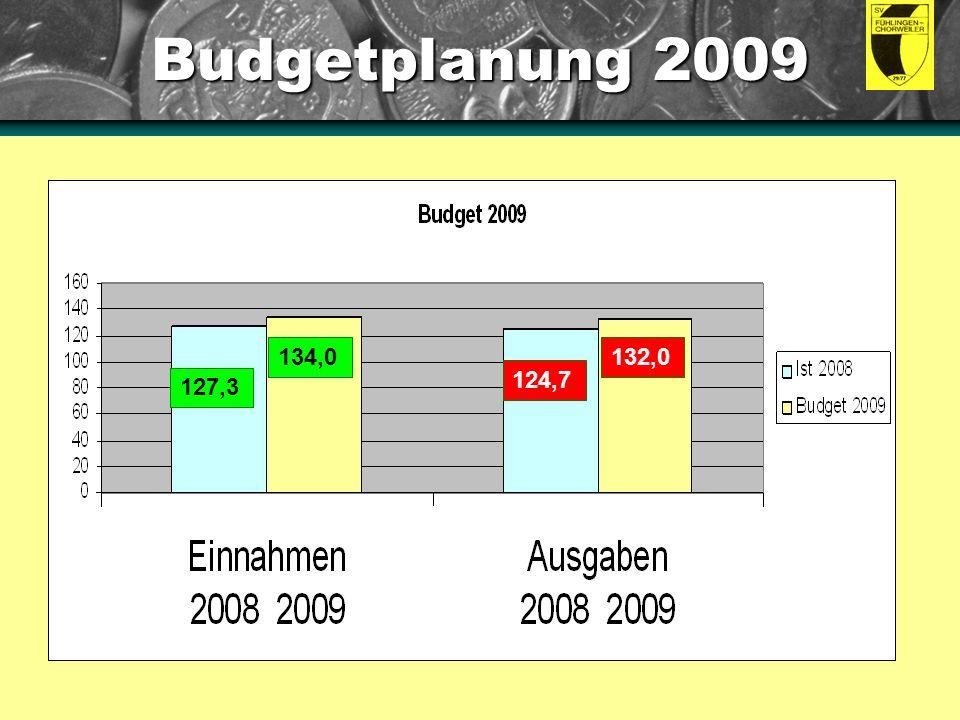 Budgetplanung 2009 Anleitung: Dies sind eingebettete Diagramme.