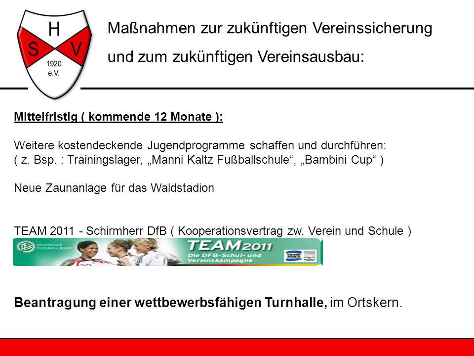 Mittelfristig ( kommende 12 Monate ): Weitere kostendeckende Jugendprogramme schaffen und durchführen: ( z. Bsp. : Trainingslager, Manni Kaltz Fußball