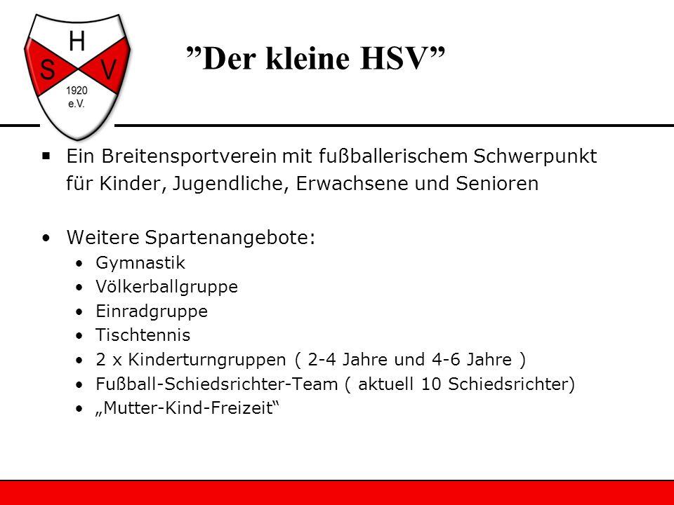 Der kleine HSV Ein Breitensportverein mit fußballerischem Schwerpunkt für Kinder, Jugendliche, Erwachsene und Senioren Weitere Spartenangebote: Gymnas